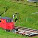 BLM X25_20110810 copy