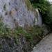 2011_09_25 Walcourt 06