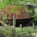 SCHAARBEEK BERM 20110407  (8)