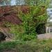 SCHAARBEEK BERM 20110407