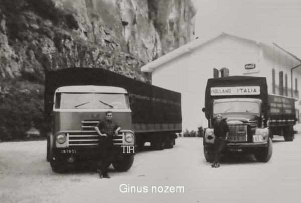Ginus Nozem