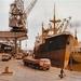 Lommerts en de oude haven van Delfzijl