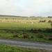 022 Massembre november 2011 - wandeling naar Givet