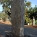 Archeologische site van Filitosa
