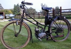 Le Poulain 1950