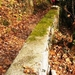 2011_11_20 Anseremme 006