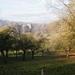 2011_11_20 Anseremme 020
