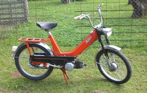 Staiger 1971