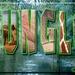 Jungletekst met afbeeldingen van dieren