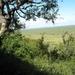 Nkumbe Lookout 1