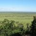 Nkumbe Lookout 2