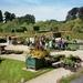 Vorderstein park plantendag