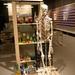 Winkel skelet