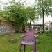 Purple Rain Kloosterstraat