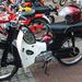 Honda gespot in Drente 2011