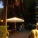 WELNESSKUUR---------------MONTE-2008 NEGRO (25)