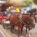 NICARAGUA---MEI-2010 (34)