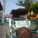 NICARAGUA---MEI-2010 (35)