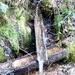 2012_01_15 Couvin 18