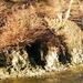 2012_01_15 Couvin 24