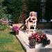 Marg  met bloemen