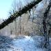 2012_02_04 Denderleeuw Wellemeersen 010