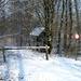 2012_02_04 Denderleeuw Wellemeersen 022