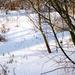 2012_02_04 Denderleeuw Wellemeersen 026