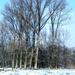 2012_02_04 Denderleeuw Wellemeersen 027