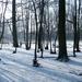 2012_02_04 Denderleeuw Wellemeersen 033