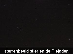 feb 2012 007