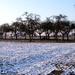 2012_02_11 Opwijk 22