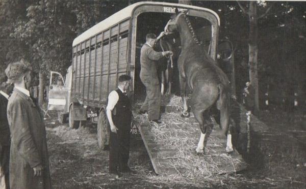 Paard laden