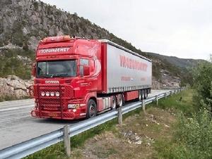 Chauffeur; Ronald Vroegindewey