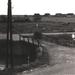 Aug 1978. Aanleg walbeschoeing Oostervaart met oude Earste wiete