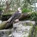 2008-10-30 Paradisio met Vico & Nona 013