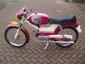 Berini Jeunesse 1962