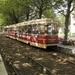 3007 Korte Voorhout 31-08-2004