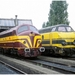 6267 & CFL 1602 FNDM TW 19980919