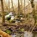 2012_03_18 Houyet 31