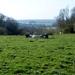2012_04_01 Villers-Deux-Eglises 13
