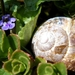 2012_04_08 Petigny 05