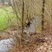 2012_04_08 Petigny 21