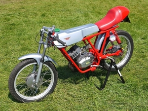 Testi Champion 1974