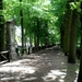 verlaten Scherpenheuvel