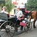 FESTIVALDAG 2005 023