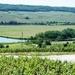 2012_05_26 Champagne prospectie 62