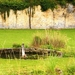 2012_08_02 PNVH Vierves-sur-Viroin 030