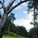 2012_08_02 PNVH Vierves-sur-Viroin 068