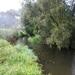 025-Kronkelende rivier de Mark in Tollembeek